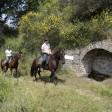 cavalli_trecking